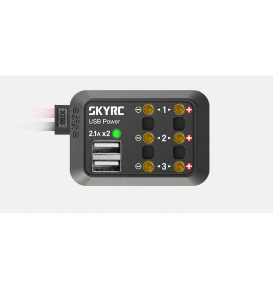 Skyrc multipresa con Banana plug e usb